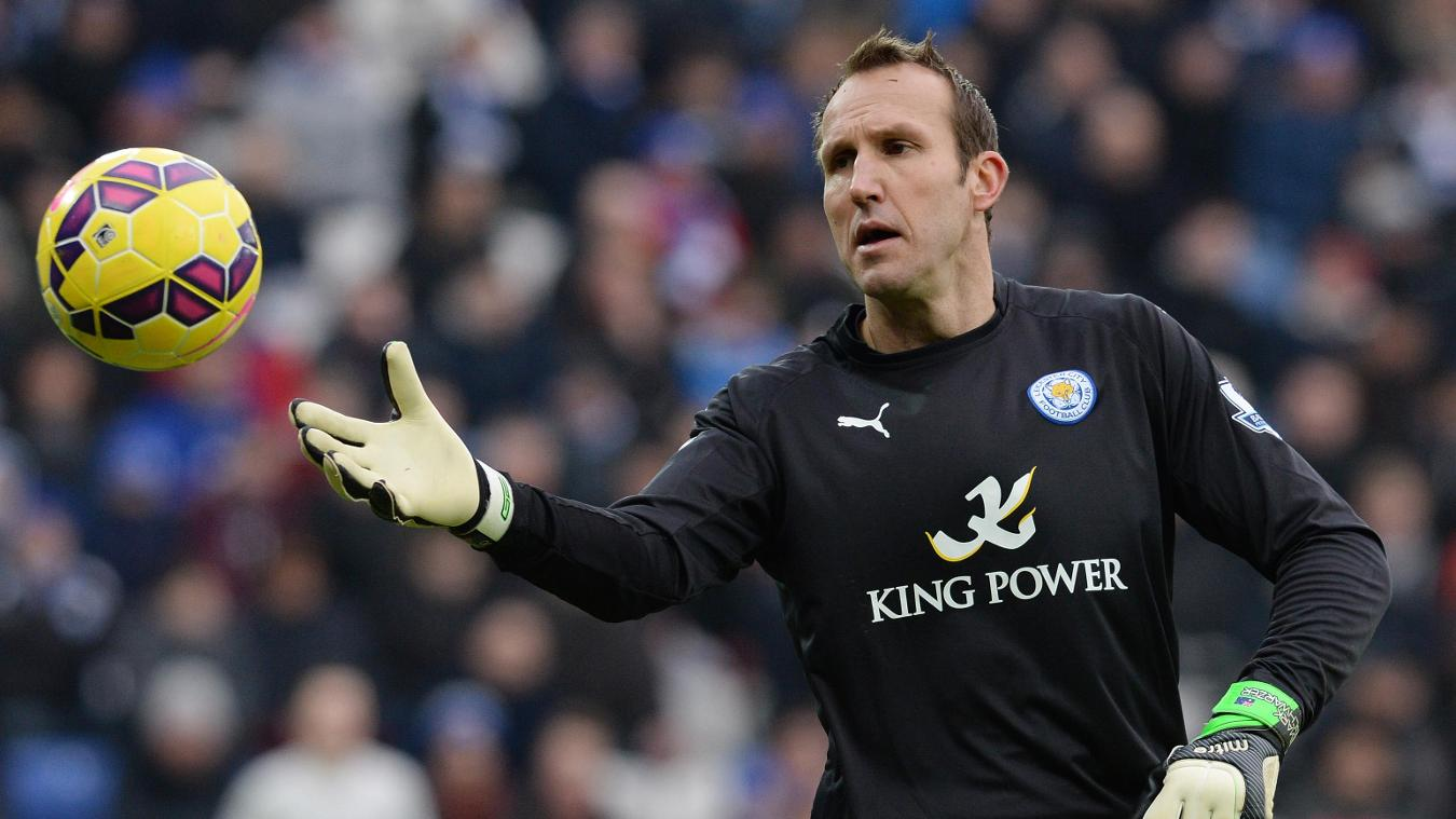 Image result for Mark Schwarzer