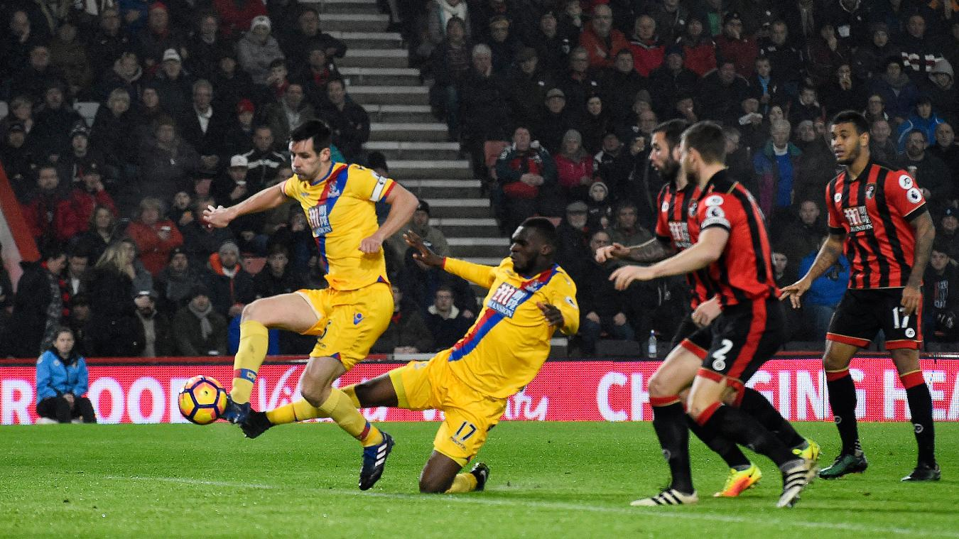 Crystal Palace's Scott Dann