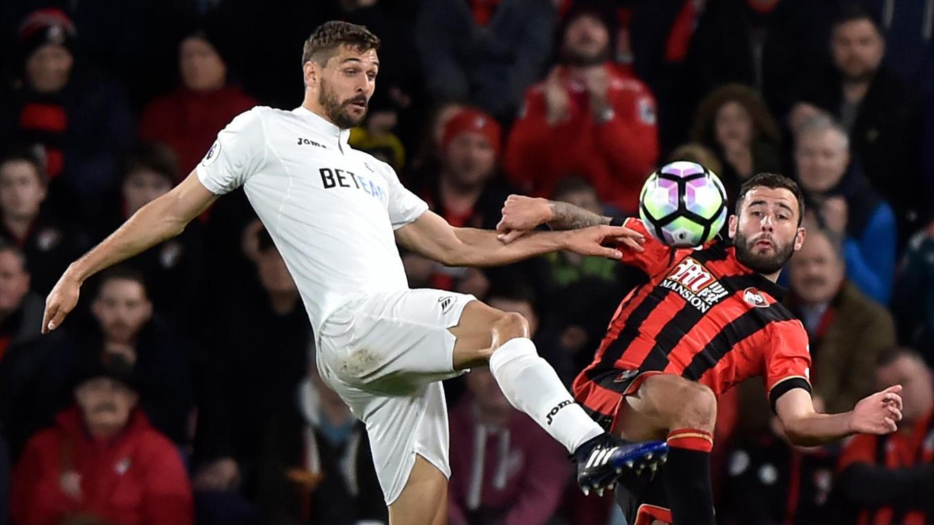 Swansea City's Fernando Llorente