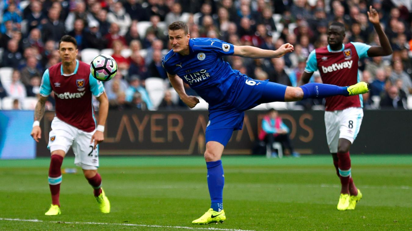 Leicester City's Robert Huth