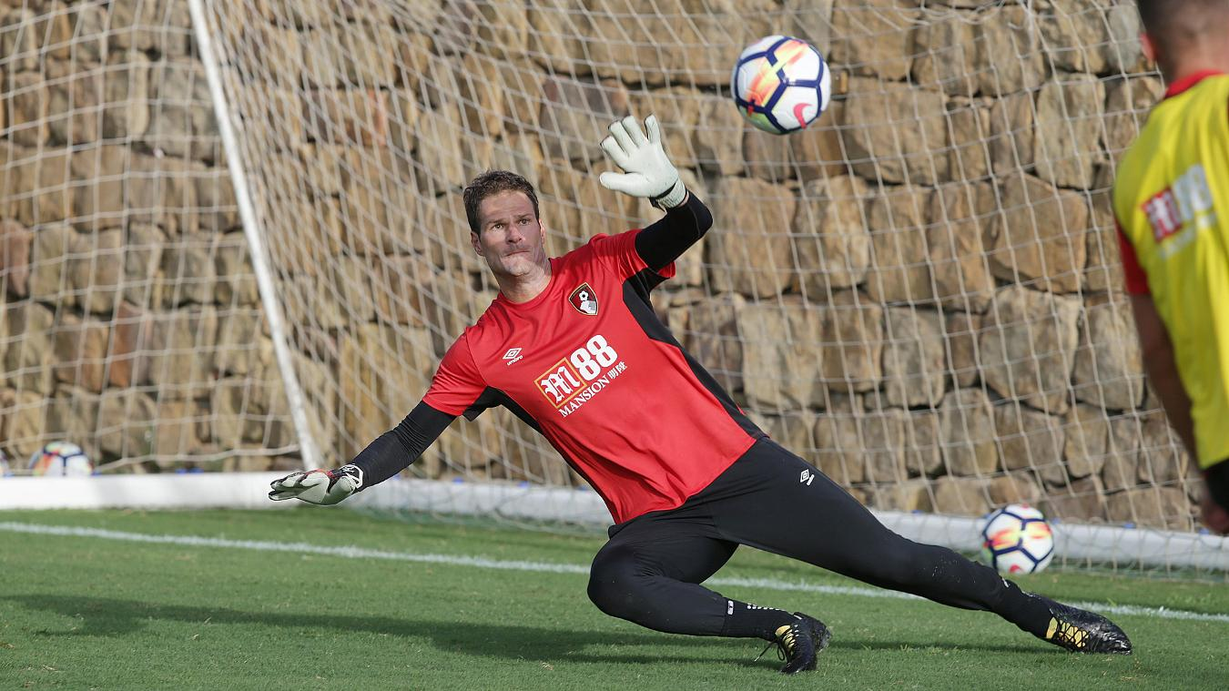 Asmir Begovic Profile News & Stats