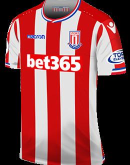 Stoke home kit, 2017-18