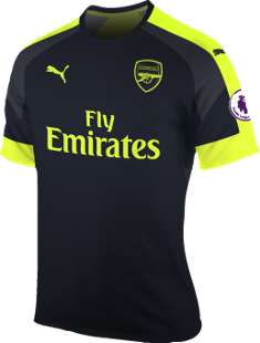 ad9f0bd23eb Arsenal FC Season History | Premier League