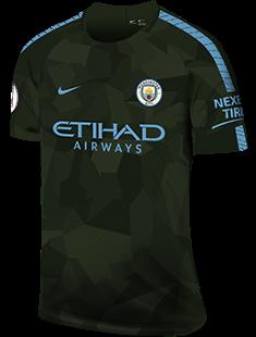 dcfe3304248 Manchester City FC Season History