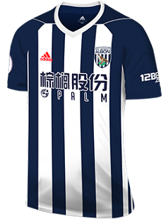 6ad9420942 West Bromwich Albion FC Season History | Premier League