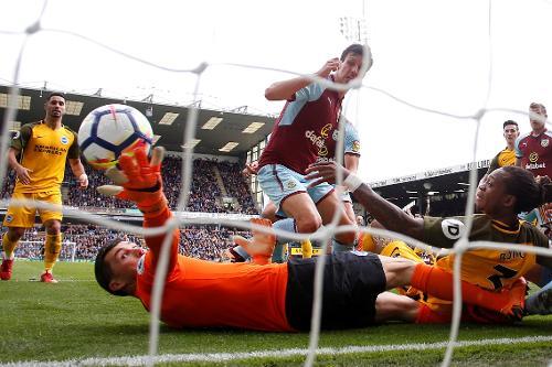 Mat Ryan Profile, News & Stats | Premier League