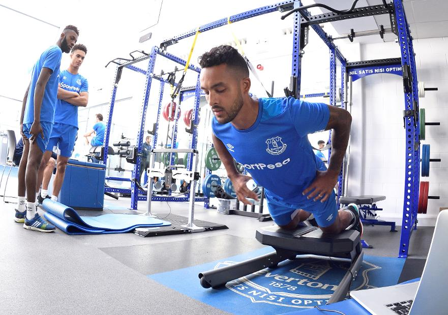 Theo Walcott, Everton