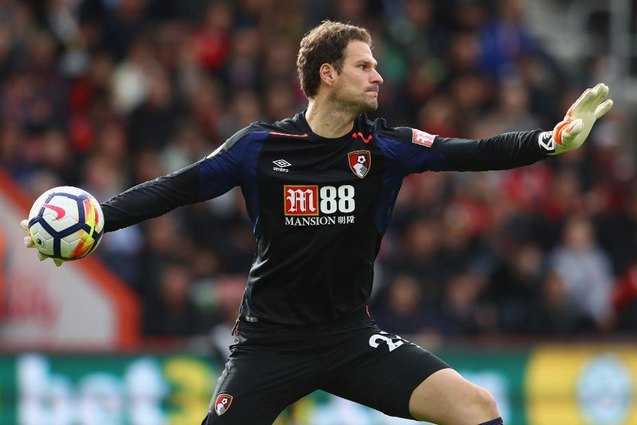 Asmir Begovic, AFC Bournemouth