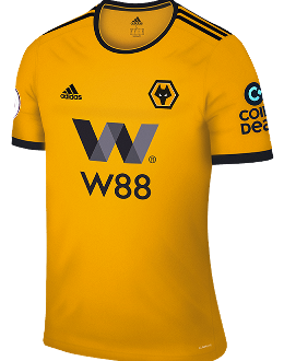 Wolves home kit, 2018-19
