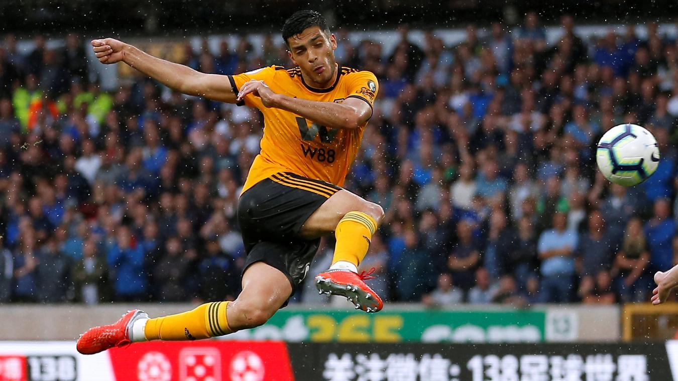 Wolverhampton vs Everton 2-2 Highlights