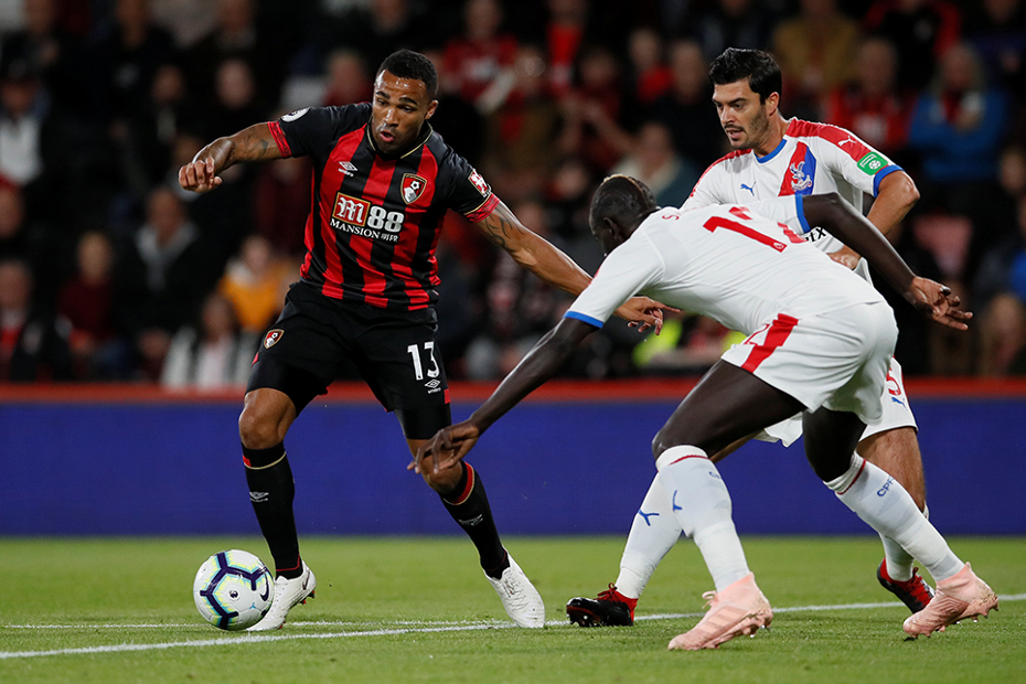 Standout players of 2018/19: Callum Wilson