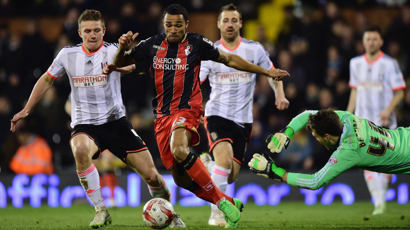 Fulham v AFC Bournemouth